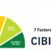 7 Factors That Affect Your CIBIL Score